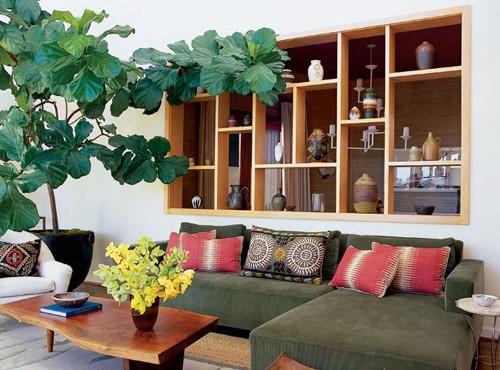 Vị trí trồng cây phong thủy trong nhà - phòng khách