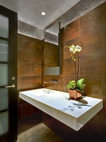 Trồng cây phong thủy - cây phong thủy phòng tắm