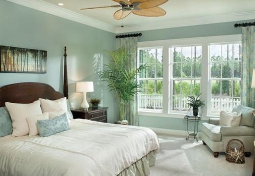 Trồng cây phong thủy trong phòng ngủ